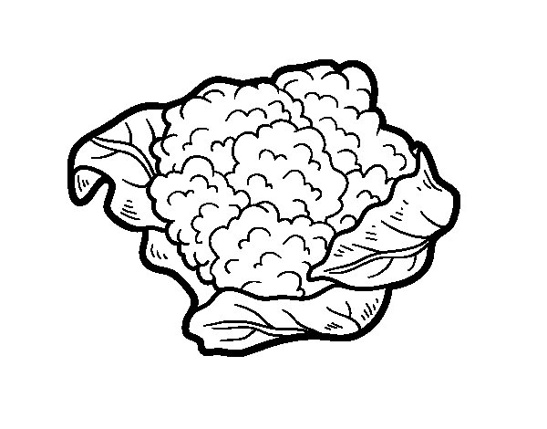 A cauliflower coloring page