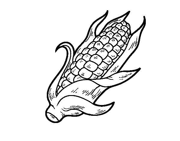 A corncob coloring page