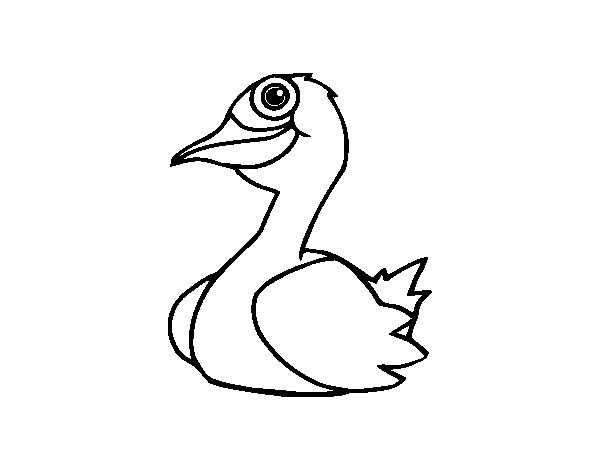 A duck coloring page