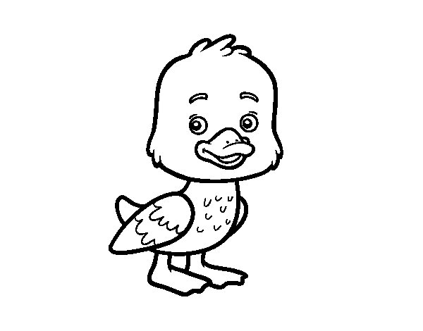 A duckling coloring page