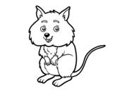 Dibujo de A little hamster