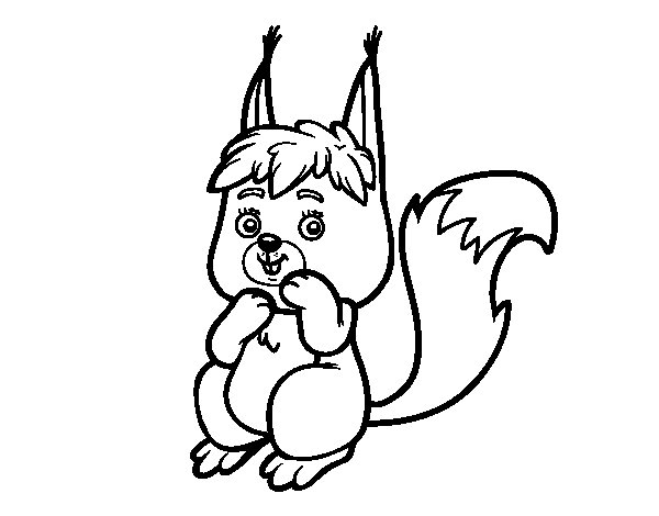 A little squirrel coloring page