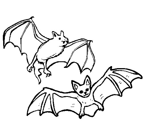 A pair of bats coloring page