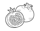 A pomegranate coloring page