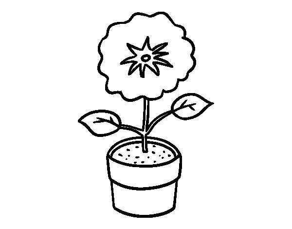 A spring flower coloring page