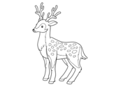 A young deer coloring page