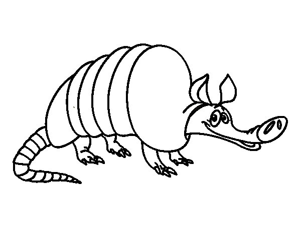 adult armadillo coloring page