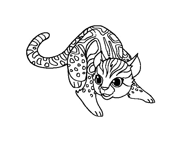 african wildcat coloring page