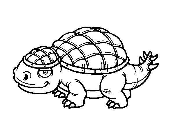 Ankylosaurid coloring page