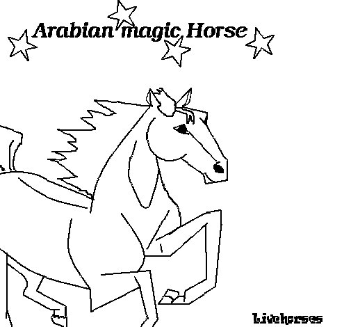 Arabian Horse Colors Arabian Horse Coloring Page