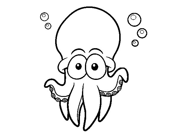 Atlantic white-spotted octopus coloring page
