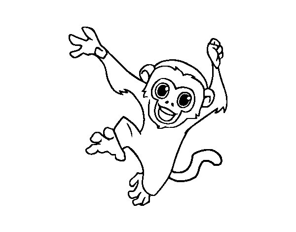 Baby capuchin monkey coloring page