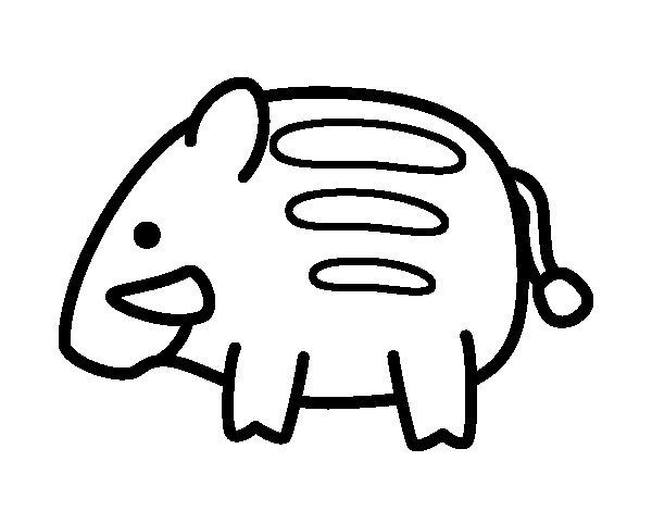 Baby wild boar coloring page