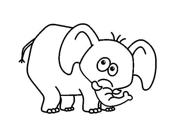 Bashful elephant coloring page