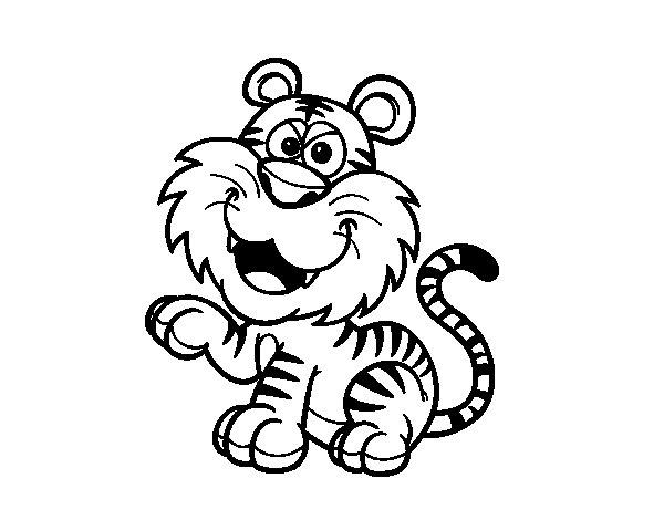 Bengal tiger coloring page Coloringcrewcom