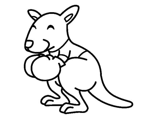 boxing kangaroo coloring page