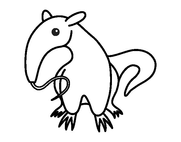 Breeding Anteater Coloring Page