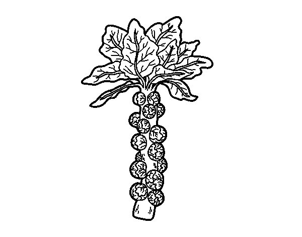 Brussels sprout coloring page