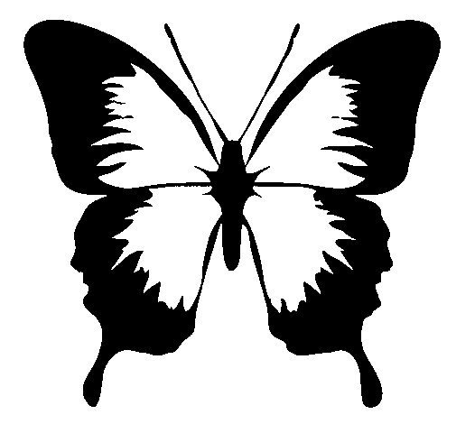 Butterfly with black wings coloring page