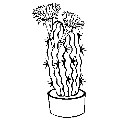 Cactus with flowers coloring page