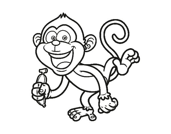 Capucin coloring page