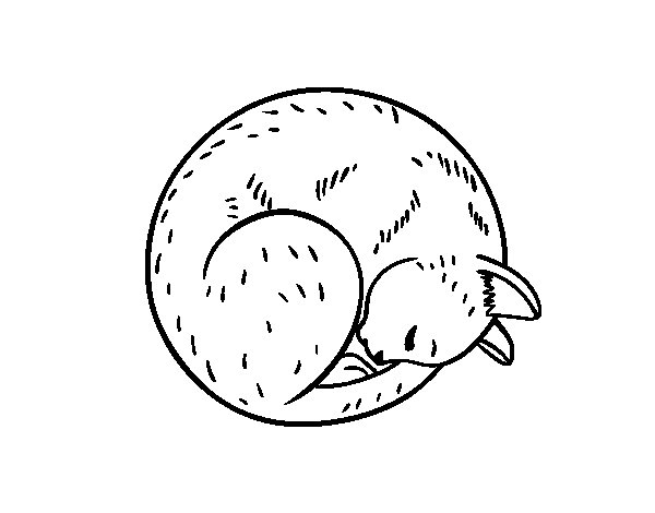 Cat posing coloring page