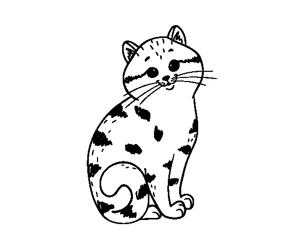 Charming kitten coloring page