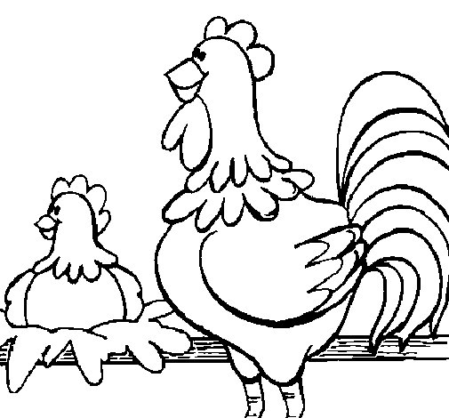 Cock and hen coloring page