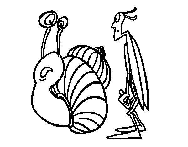 Cricket and Snail coloring page