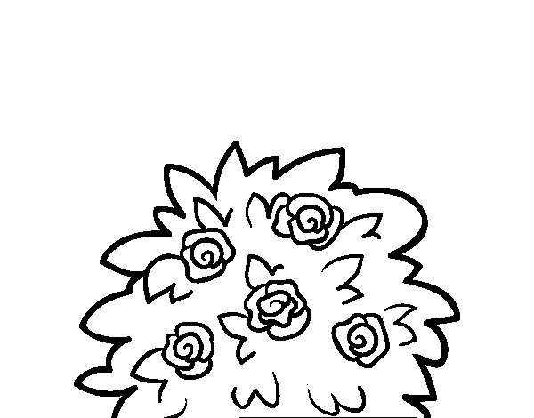 Dog-rose coloring page