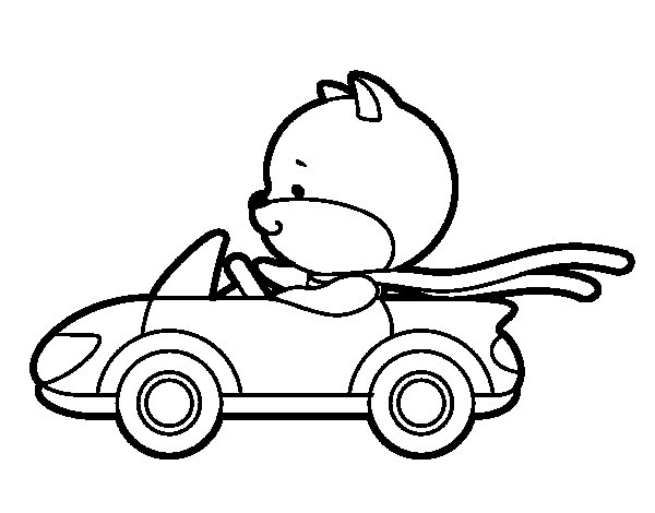 Driving cat coloring page