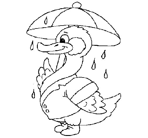 Duck in the rain coloring page