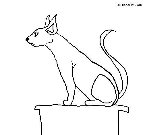 Egyptian cat II coloring page