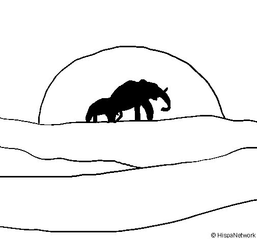 Elephant at dawn coloring page