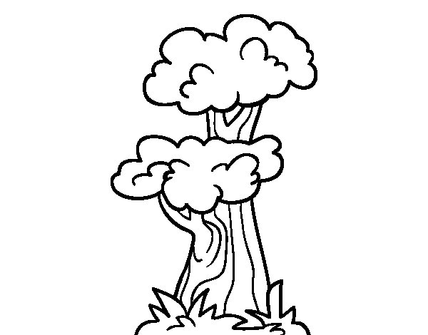 Elm coloring page
