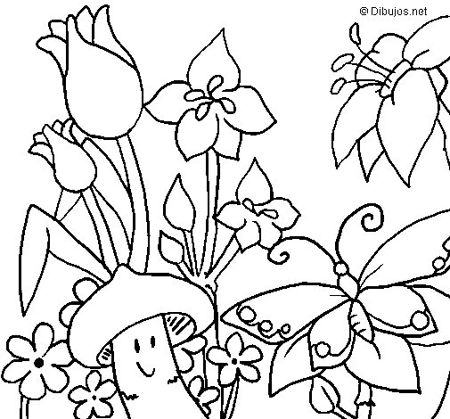 Fauna and Flora coloring page
