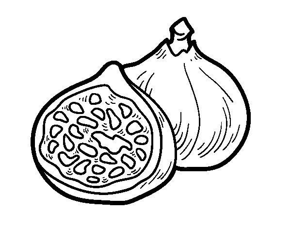 Figs coloring page