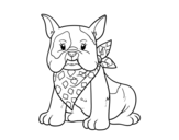 French Bulldog coloring page