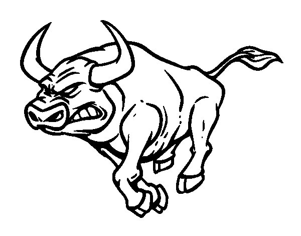 bull coloring page. Furious bull coloring page  Coloringcrew com