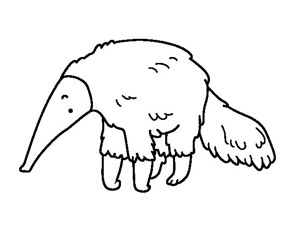 Furry Anteater Coloring Page