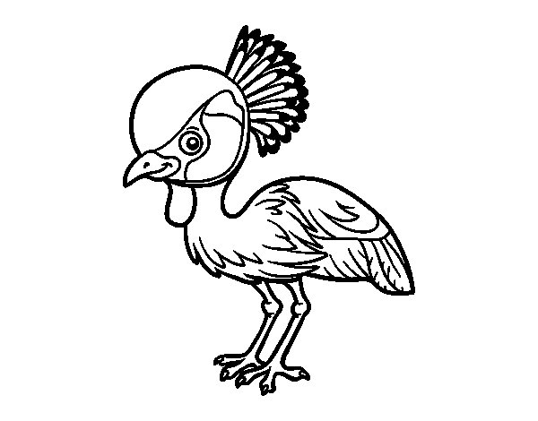Grey crowned crane coloring page