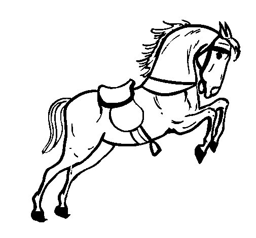Worksheet. Horse with saddle jumping coloring page  Coloringcrewcom