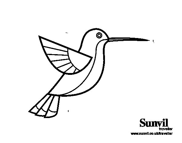 Hummingbird Animal Coloring Pages. Hummingbird coloring page  Coloringcrew com