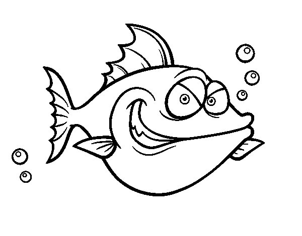 John Dory coloring page