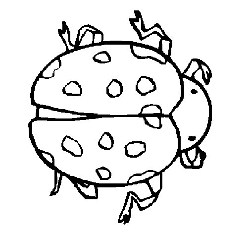 Ladybird 2 coloring page