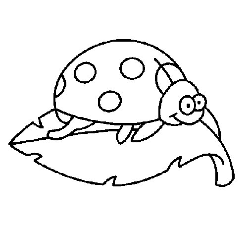 Ladybird on a leaf coloring page