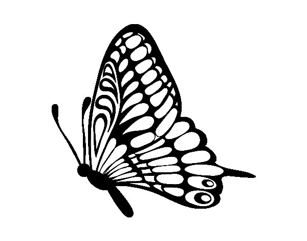 Left butterfly coloring page
