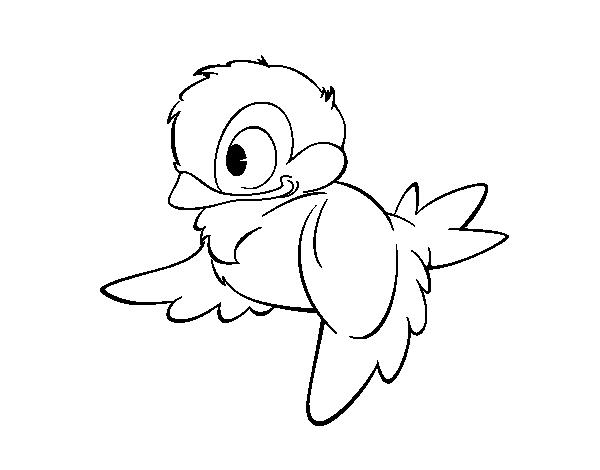 Cute bird coloring pages  Hellokidscom