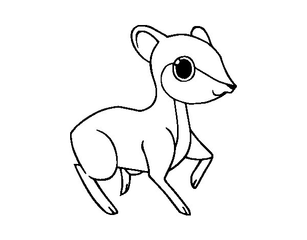 Little fawn coloring page