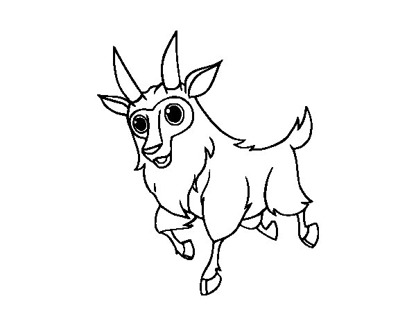 Male goat coloring page
